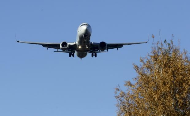 Russian plane crash: Possible survivors
