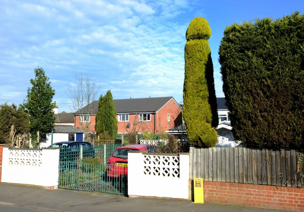 Man crafts huge 18ft PENIS-shaped tree in front garden in
