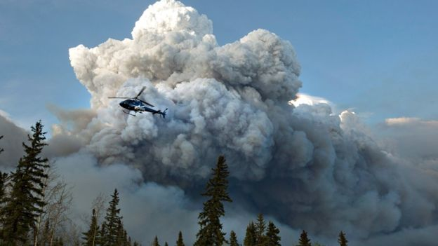 Canada wildfire: Alberta declares emergency in Fort McMurray