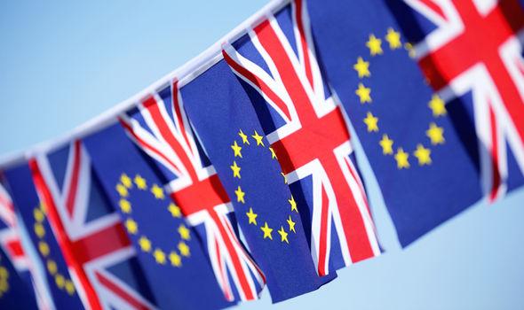 EU-flags-533439