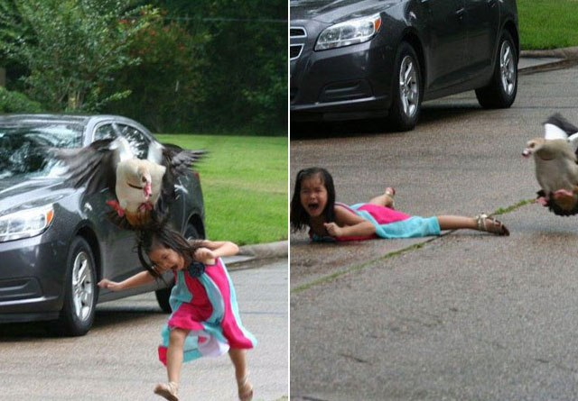 Pictures of goose attack on 5-year-old girl go viral