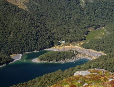 Czech woman survives for a month in remote New Zealand hut after partner dies while hiking