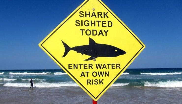 Shark attack Australia: Man bitten 3 times, thrown 6 feet into the air