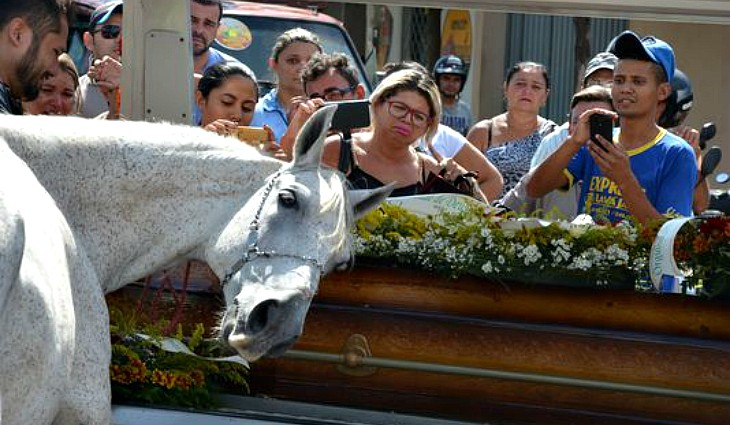 Heart-breaking moment horse cries at owner's funeral