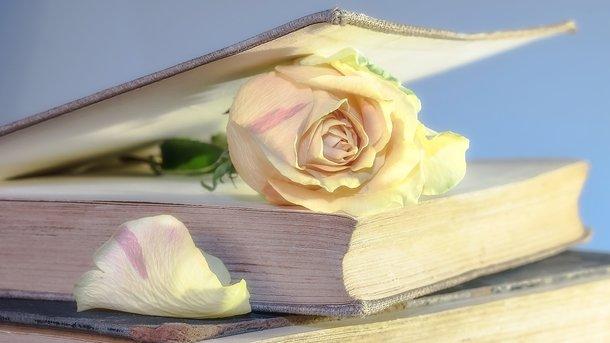 Названа  шокирующая причина смерти известной английской писательницы Джейн Остин