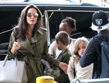 Новый этап в жизни:  Джоли поразила роскошным цветущим видом!