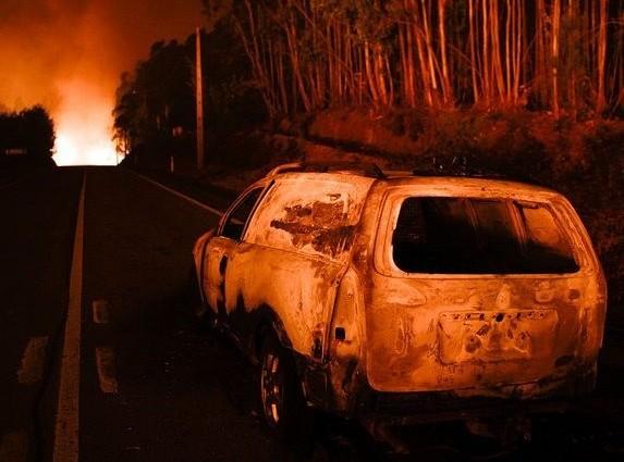 Кошмарные пожары в Португалии: Число погибших превысило 60 человек (ФОТО)