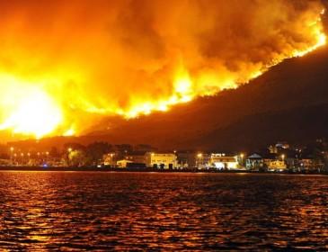Мощные пожары выжигают Калифорнию: ужасные кадры