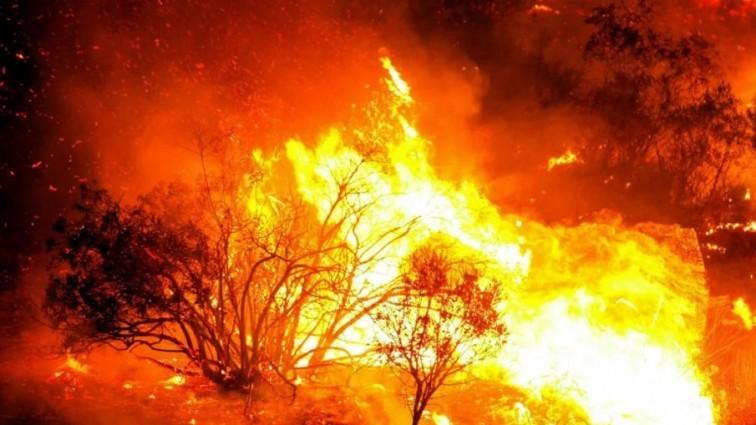 Апокалипсис: огонь во Франции подступает к домам, спасатели бессильны