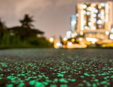 Светящаяся тропа в Сингапуре: Просто удивительные фото! Не пропустите!