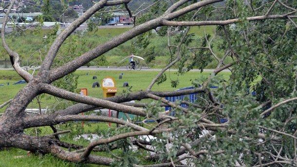 Самый мощный за 12 лет ураган «Харви» забрал жизни многих. Ужасающие детали