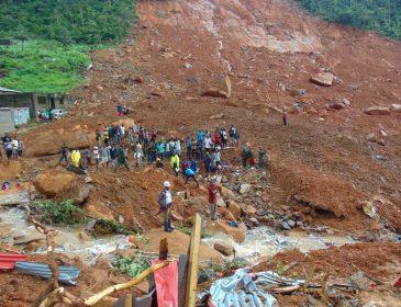 Оползень в Сьерра-Леоне: более 400 погибших