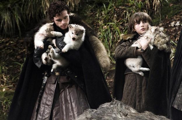 Фанаты «Игры престолов» устроили муки для домашних животных