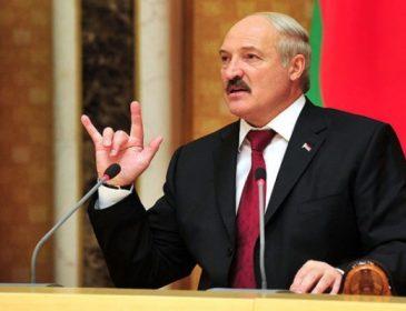 «Смотрю, как вы там кувыркаетесь»: То, что сказал Лукашенко на официальной встрече шокировало страну