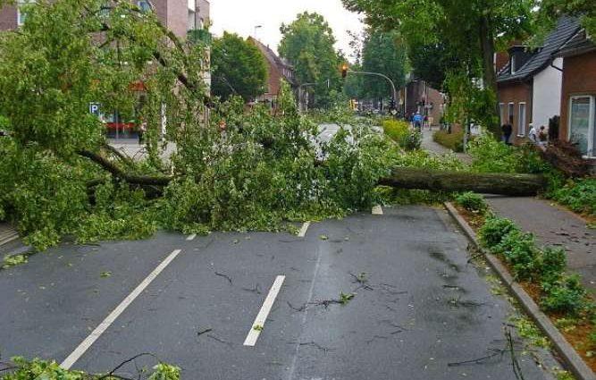 Мощный ураган атаковал Европу: появились жуткие фото