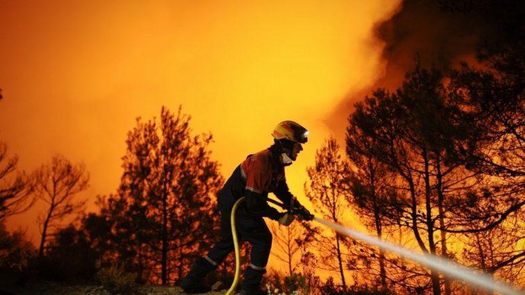 В Испании и Португалии разбушевалась огненная стихия, погибли три десятка людей