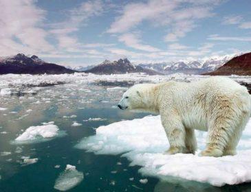 Глобальное потепление: последствия