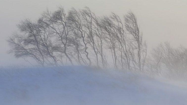 Мощный снежный буран: обьявлено чрезвычайное положение