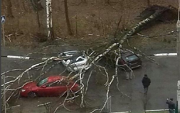 «Есть погибшие и раненые»: в Москве начался ураган
