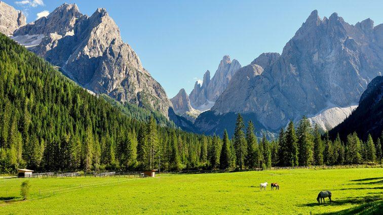 В горах исчез известный миллиардер: идут поиски