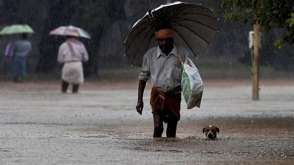 Страной прокатился ужасающий шторм, есть жертвы