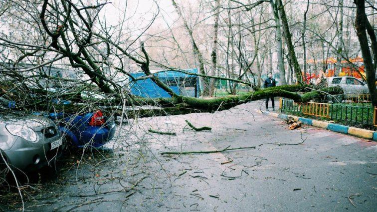 Ужасный ураган в Москве.Среди раненых дети