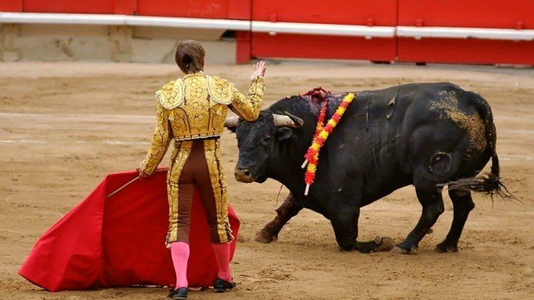В Испании массовые протесты против корриды