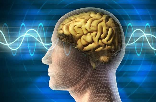 Как замедлить старение мозга и сохранить рассудок до глубокой старости