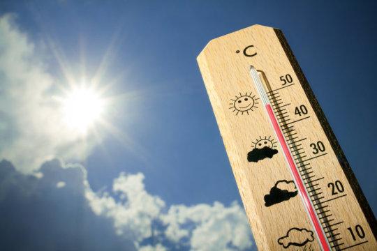 «На несколько градусов выше нормы»: В Москве аномальная жара