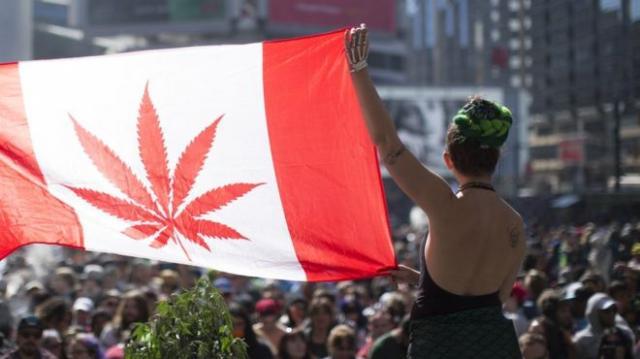 «Поздравил страну с легализацией марихуаны»: В Канаде новые правила