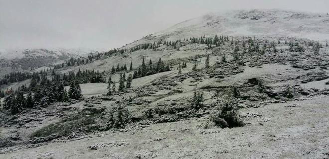 «Засыпало снегом»: В Закарпатье приступили к экстренной эвакуации детей из палаточного лагеря (ВИДЕО)