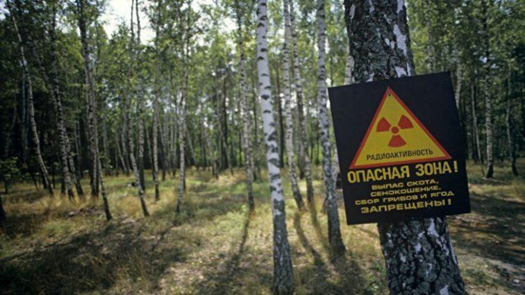 «Привязали к дереву и жестко надругались»: На иностранную блогершу напали около Чернобыля