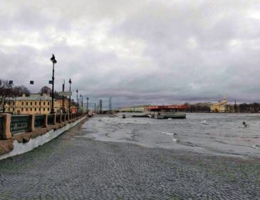 Мощный ураган в Петербурге: пострадали три человека