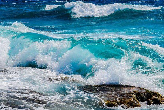 В Каспийском море выявили неизвестное науке существо: кадры