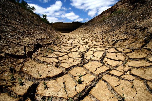 Из-за засухи в Татарстане объявили режим ЧС