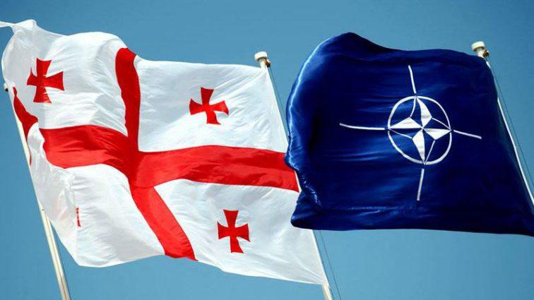 Грузия ответила на острое заявление со стороны российских властей по поводу вступления в НАТО