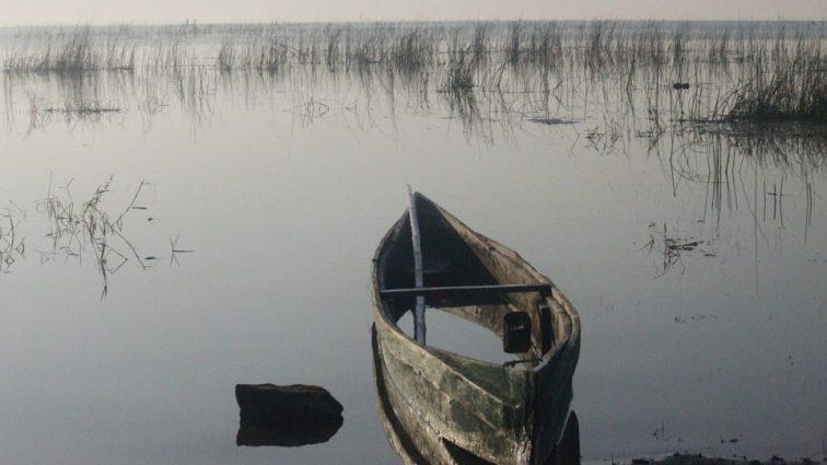 «Вытолкнул друга из лодки на съедение аллигаторам»: Жена с любовником жестоко расправилась с мужем