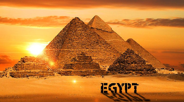 В Египте запретили продажу «желтых жилетов» на фоне протестов во Франции