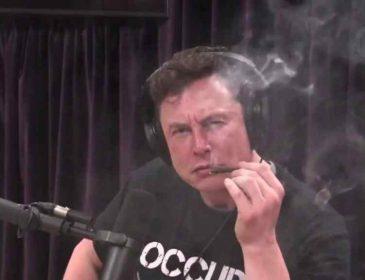 Илон Маск пообещал NASA больше не курить марихуану в публичных местах