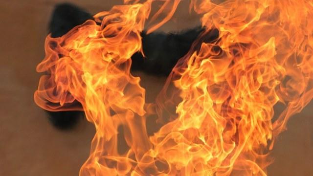 «Одежда загорелась вмиг»: Чемпион мира и призер Олимпийских игр едва не сгорел у себя дома