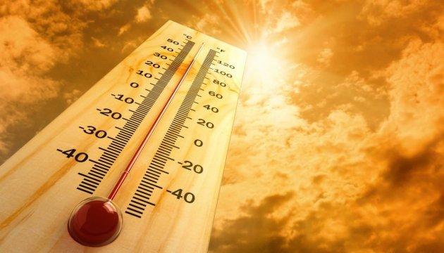 Рекордная жара в Австралии привела к нехватке кислорода, есть жертвы