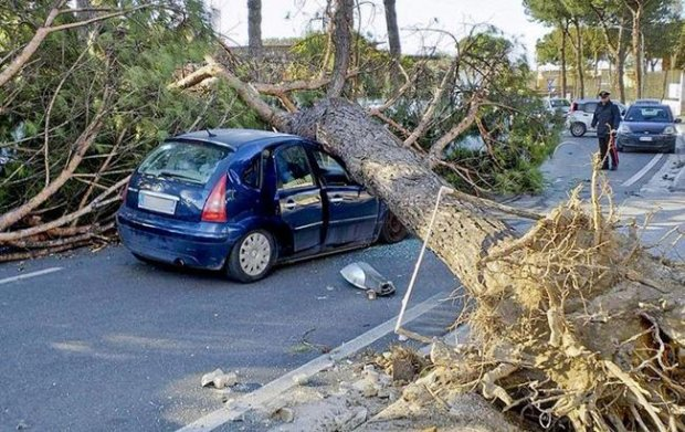 Сносит все на своем пути: на Италию обрушился мощный ураган, есть жертвы
