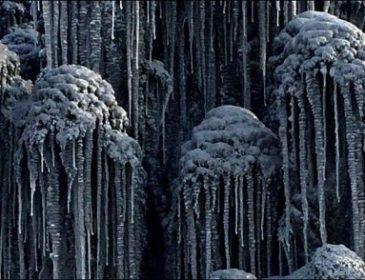 Жуткий черный токсичный снег накрыл Сибирь